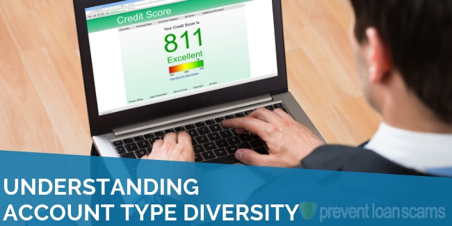 Understanding Account Type Diversity